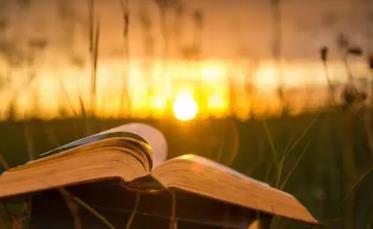 舍逸斋—创业要趁早?那咱们写网文,写小说需要趁早吗?